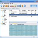 Free Download ManagerResimli Anlatim